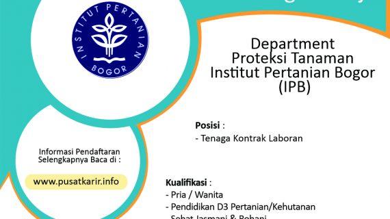 Lowongan Kerja Department Proteksi Tanaman Institut Pertanian Bogor (IPB)